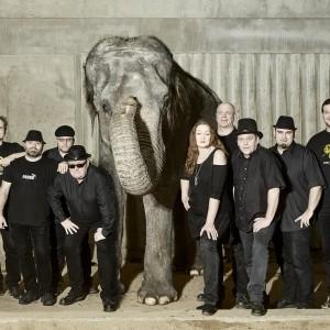 Kapela Sto zvířat startuje svou letošní ELEPHANTOUR