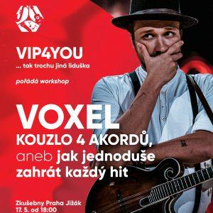 Workshop – LIVE s Voxelem